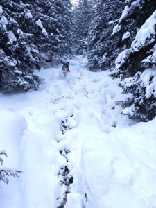 En Revelstoke (Canadá) en un rio casi helado.